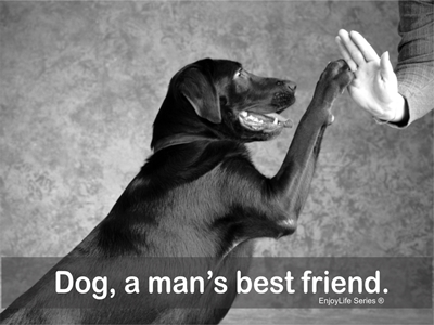 Dog a man's friend