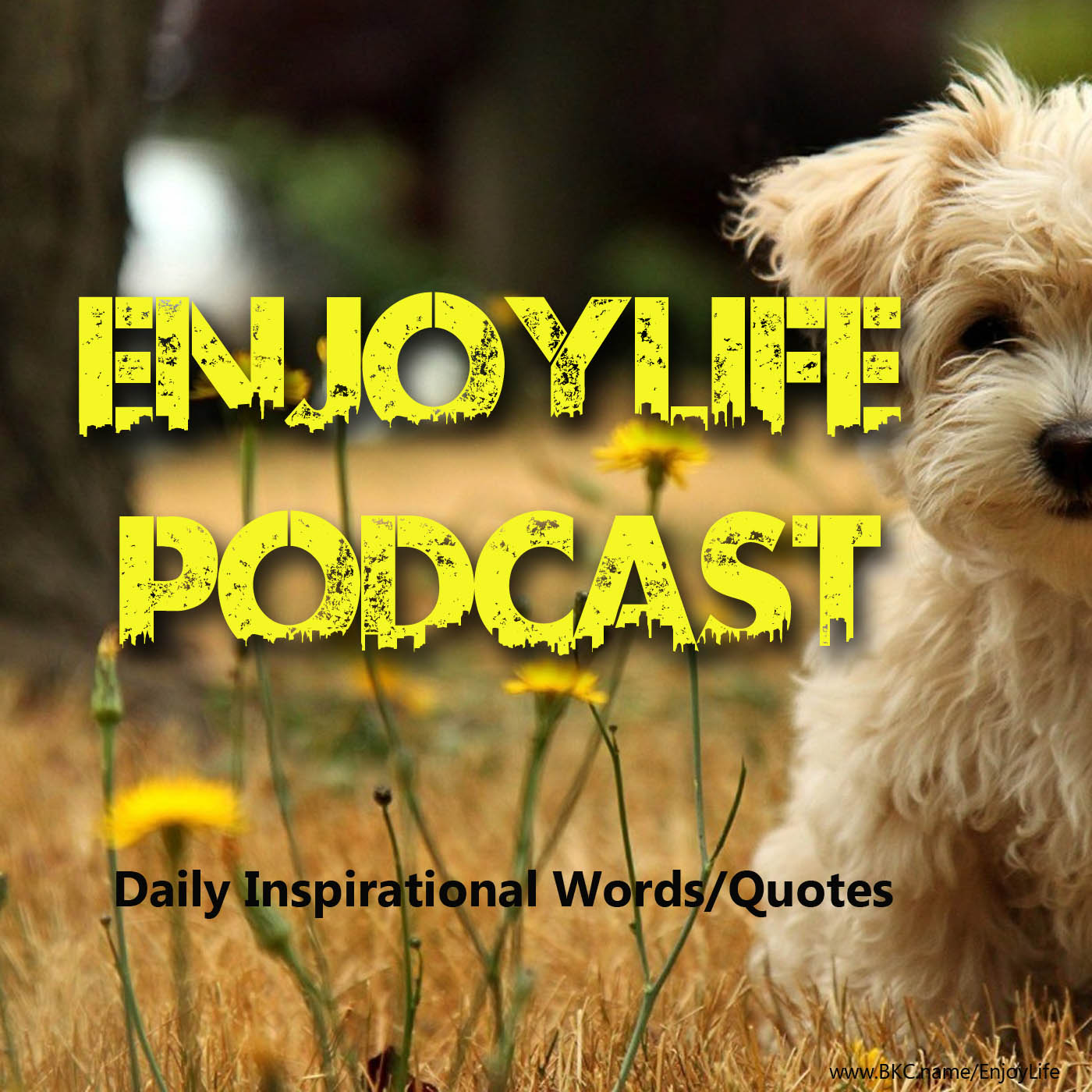 EnjoyLife Daily Podcast